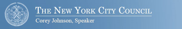 New York City Council Header